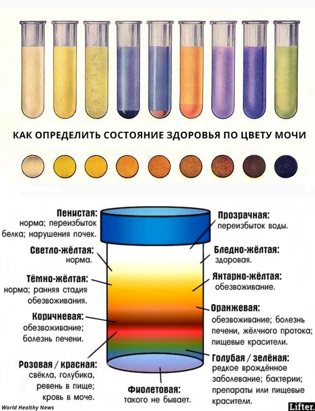 sekreti-molodosti-glotanie-spermi