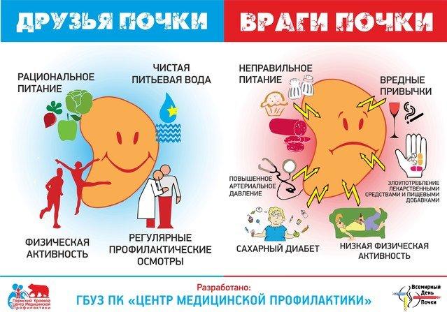 Диета при цистите и пиелонефрите: общие рекомендации