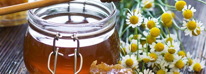 Мёд при цистите