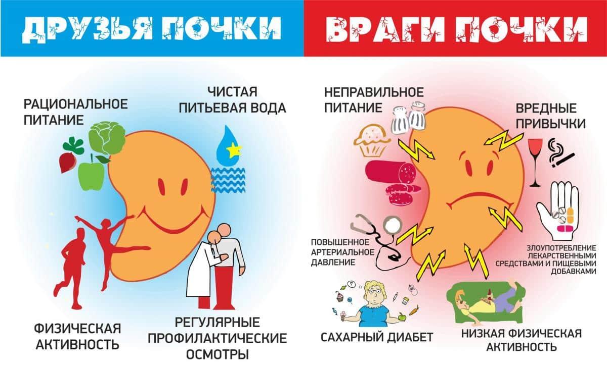 Чем опасен и как проявляется пиелонефрит: последствия, причины возникновения у мужчин и женщин