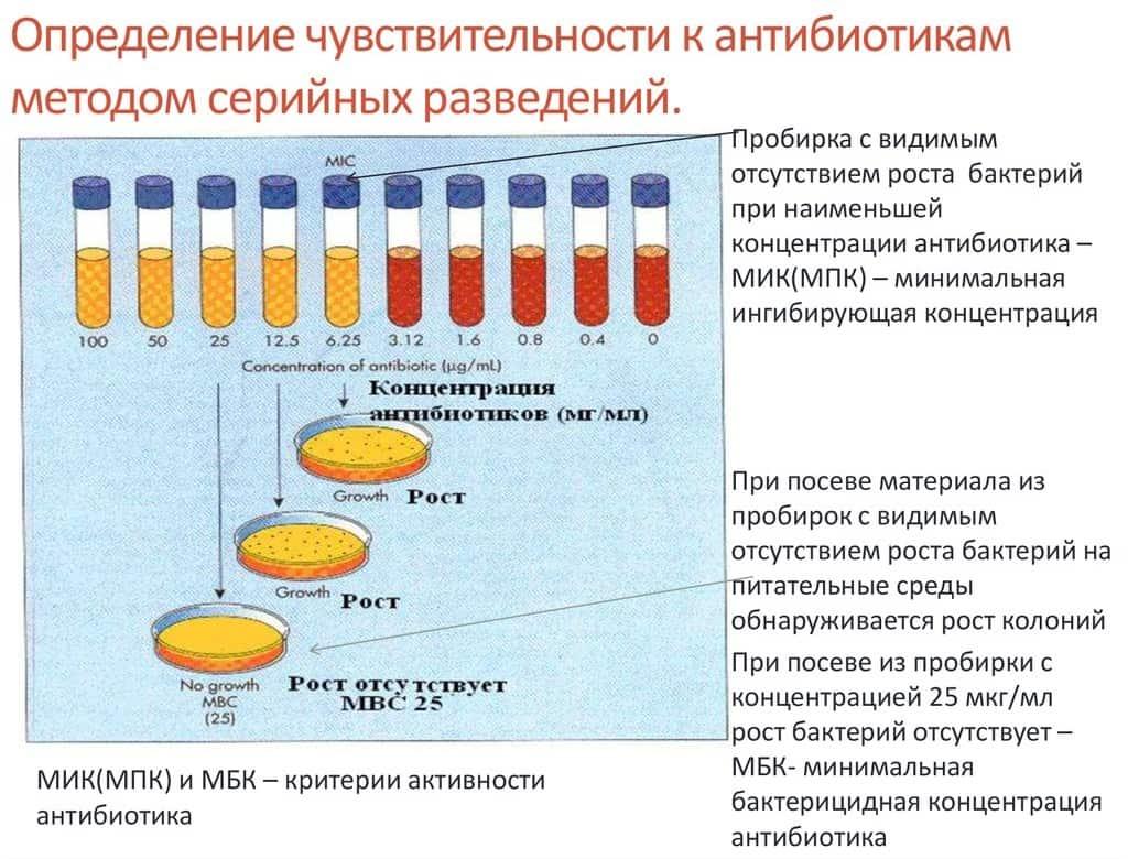 Бактериальный посев на чувствительность к антибиотикам